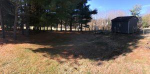 North Almond III Backyard
